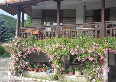 """Къща за гости """"Брезата"""" градина Изглед с рози 2"""